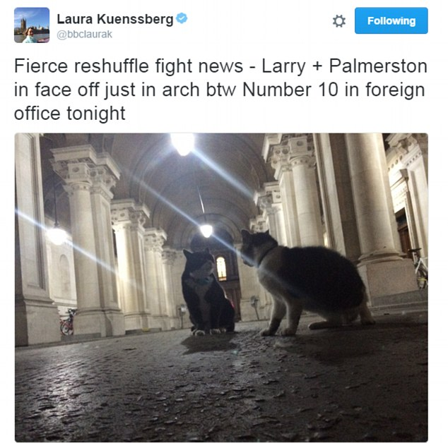 Larry-Palmerston