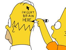 idiot5