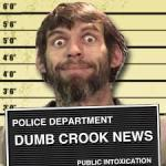 dumb-crook2