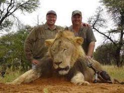 trump-lion