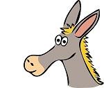monday-donkey