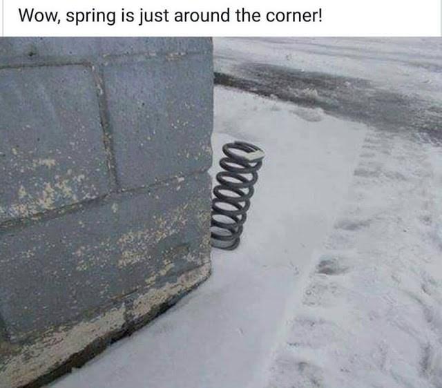 Monday-spring.jpeg