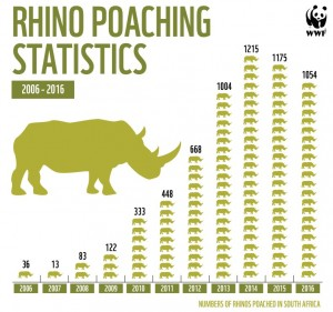rhino-stats