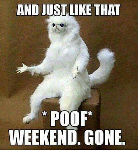 Monday-poof