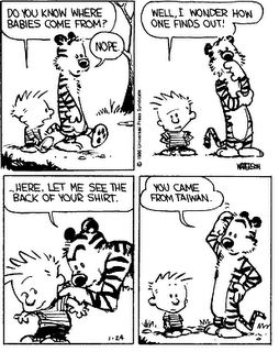 Calvin-hobbes-2
