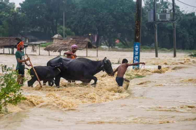 flood-5.jpg