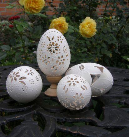 eggs-4