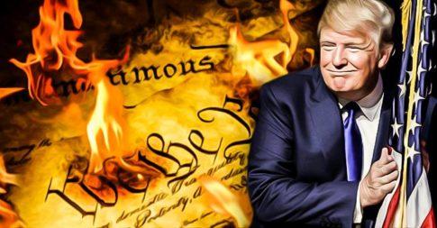 trump constitution 1