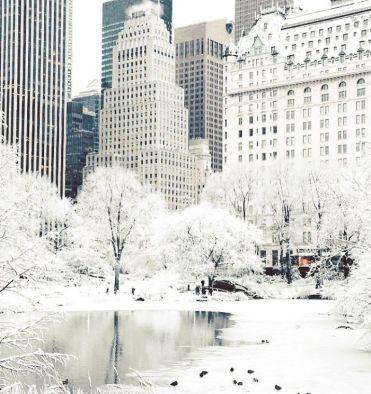 NYC-1