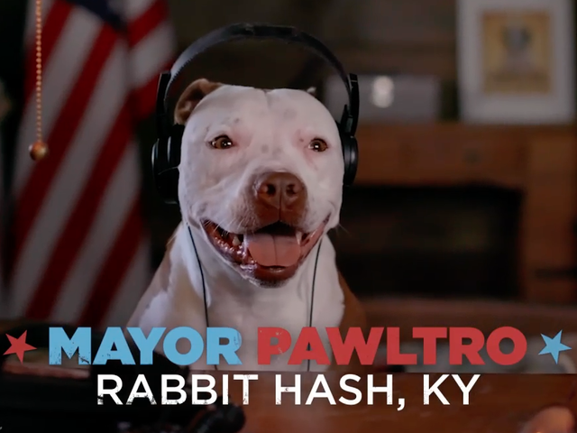 rabbit hash mayor