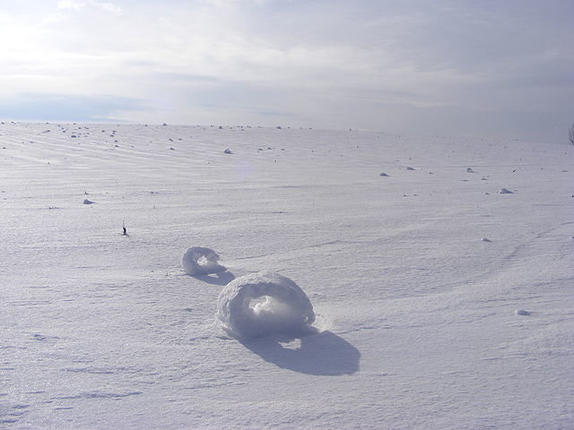 snow rollers-3