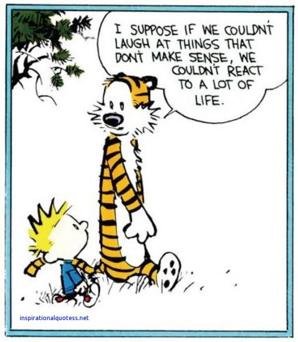 calvin and hobbes inspirational quotes Inspirational Best 25 Calvin and hobbes quotes ideas on Pinterest