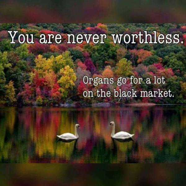 not worthless