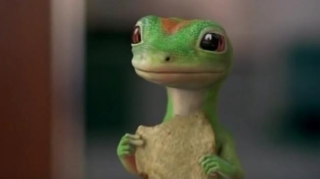 gecko-1
