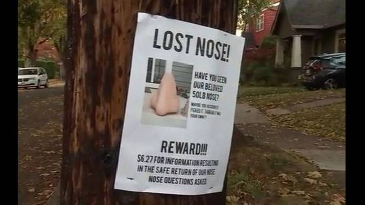 lost nose poster