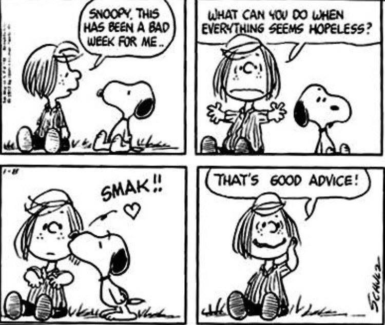 Peanuts-toon