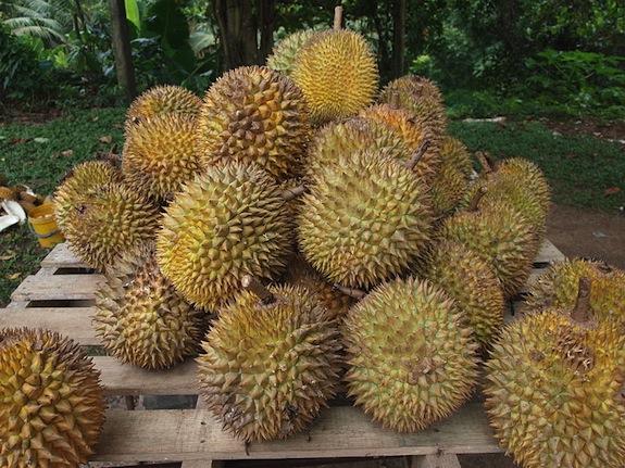 durians.jpg