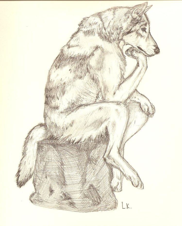 thinking wolf