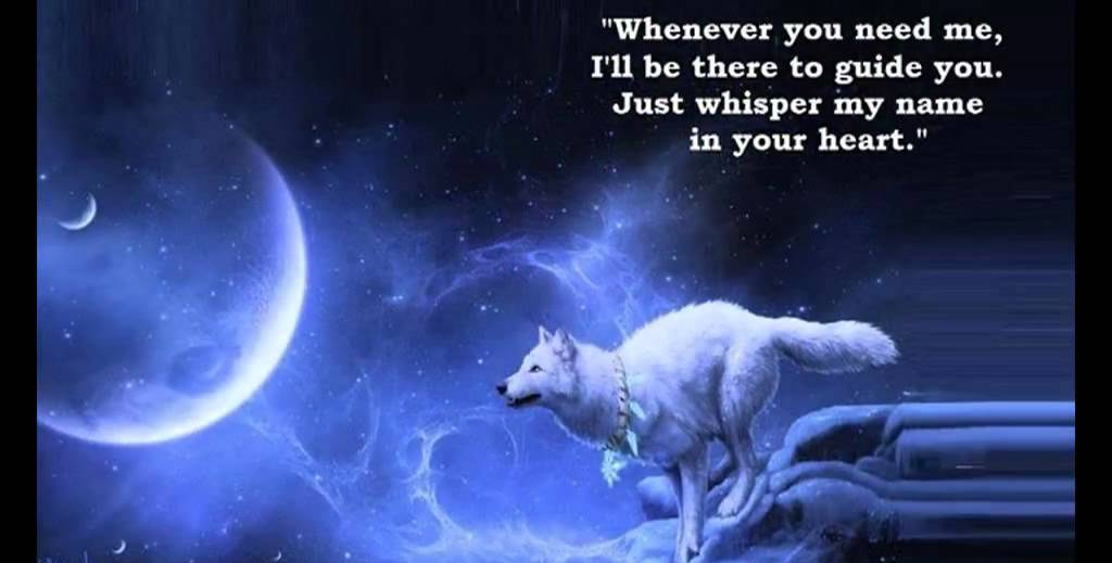 wolf-quote-2