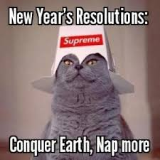 cat-resolution