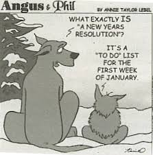 resolution-toon