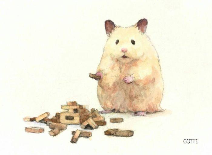 hamster-10