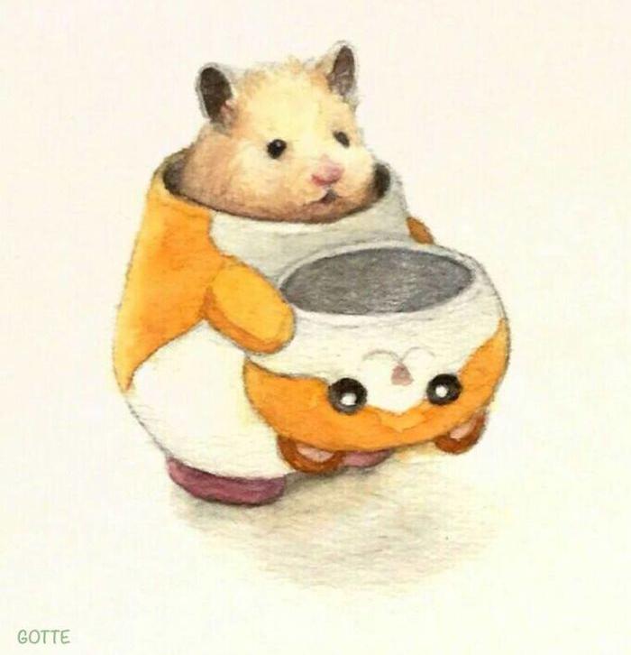 hamster-8.jpg