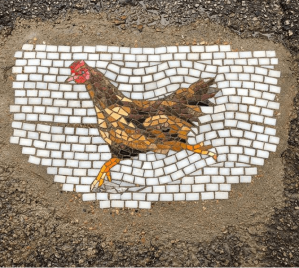 pothole-chicken