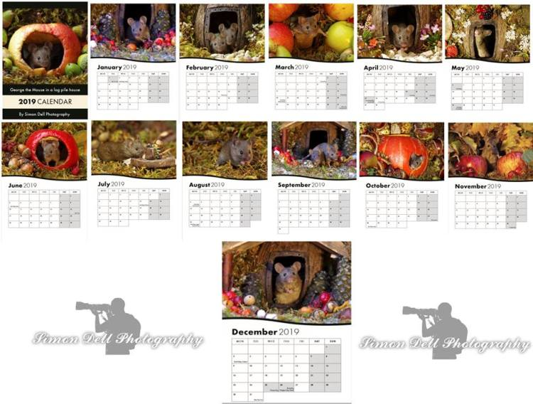 simon dell calendar