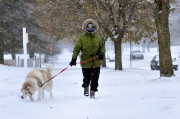 """Franrose Tashjian walks her almost 12-year-old siberan husky, Khubie, down Summit Ave. on Thursday, Jan. 11, 2018 in this winter's latest snowfall. Tahijan who has three children says that Khubie is a really cute dog. """"This is his weather,"""" she said. Snow and ice arrived Thursday morning with a temperature drop of 30 degrees and wind chill as low as -15. (Pioneer Press / Ginger Pinson)"""