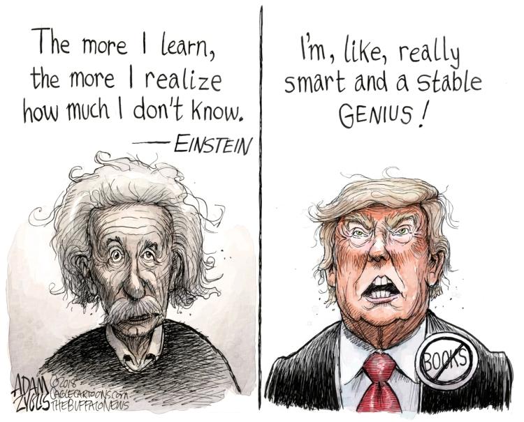 genius-2.jpg