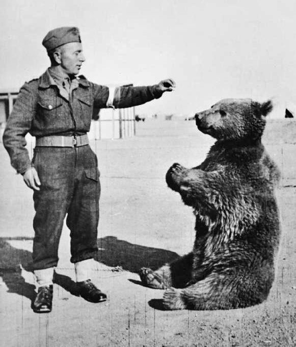 Wojtek with soldier