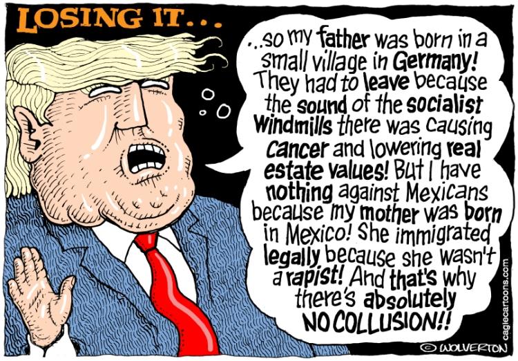 trump-insanity