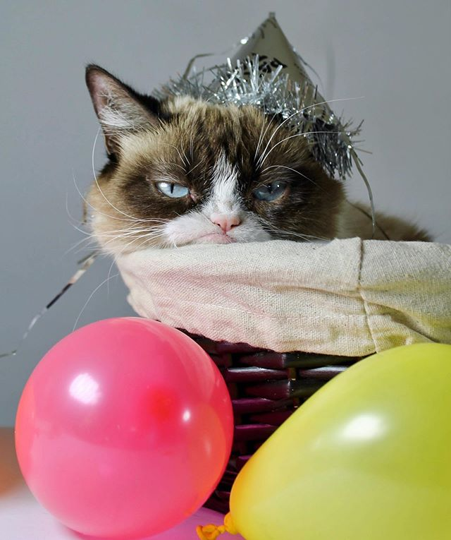 grumpy-birthday