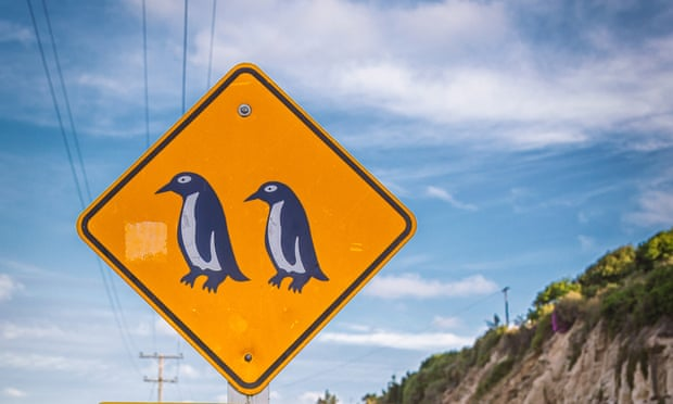 penguins-sign