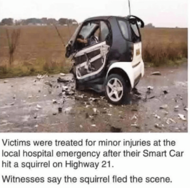 tiny-car-meets-squirrel.png