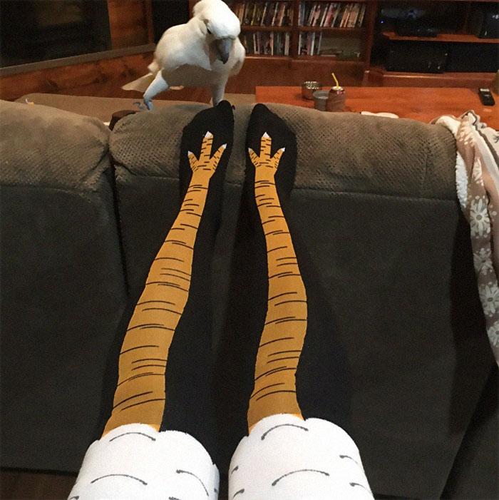 chicken-leg-socks-2