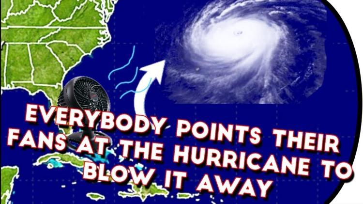fans-Irma