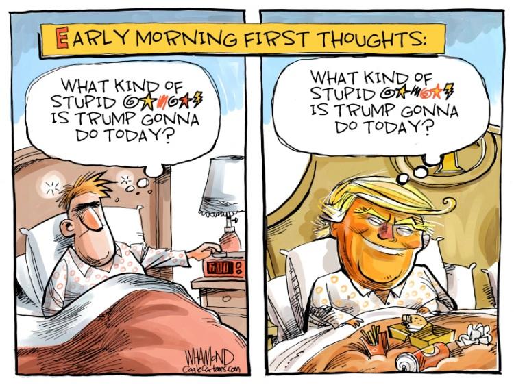Trump-stupid