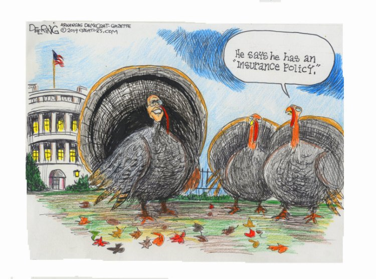 turkey-3