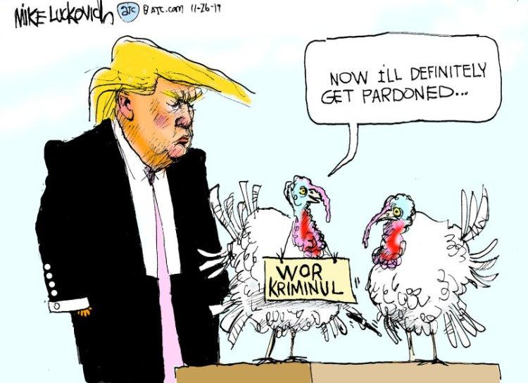 turkey-6