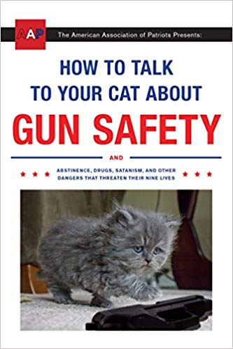 xmas-cat-gun-safety
