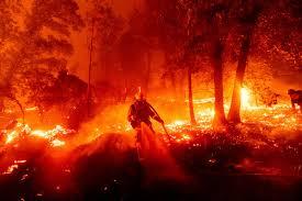 fires-1