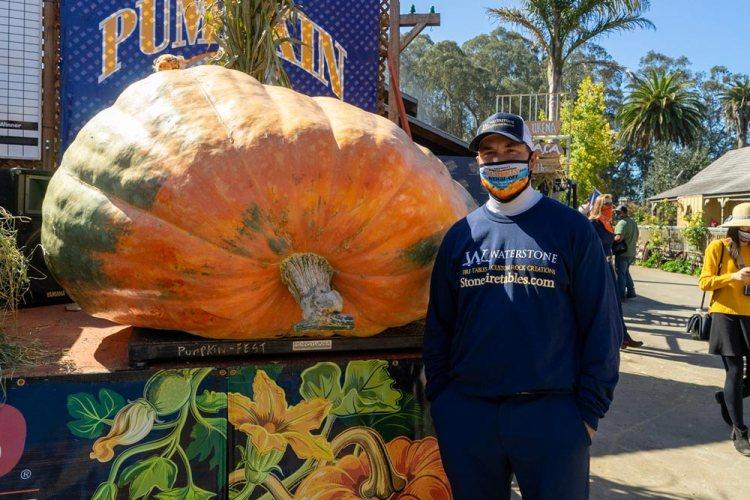 pumpkin-winner