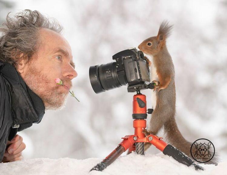 squirrel-9