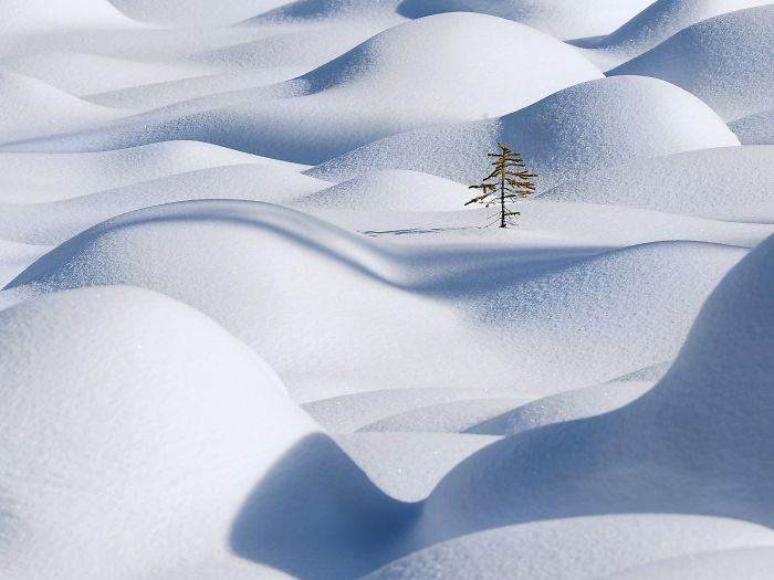 snow-38