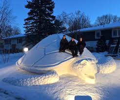snow-tortuga