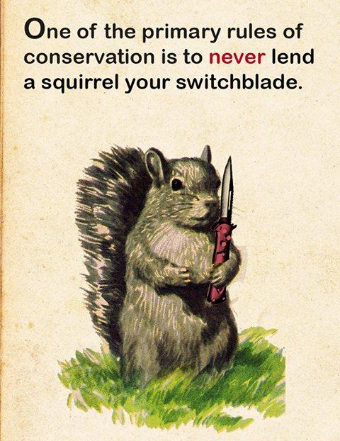 squirrel-nife-meme