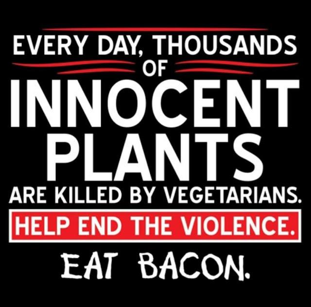 bacon8